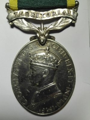 Territorial efficiency medal